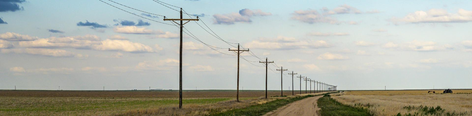 Telephone poles in rural area